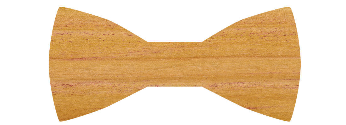 Holz 13